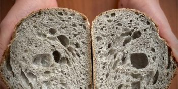 Kruh sive barve