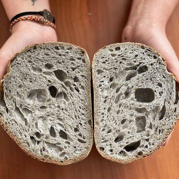 testo za kruh z drozmi